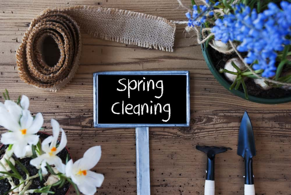 spring home cleaning